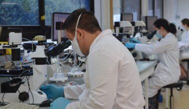 MEA laboratory Neuroservice