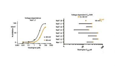 Vixotrigine data by Neuroservice