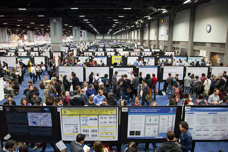 People presenting posters at a neuroscience conference
