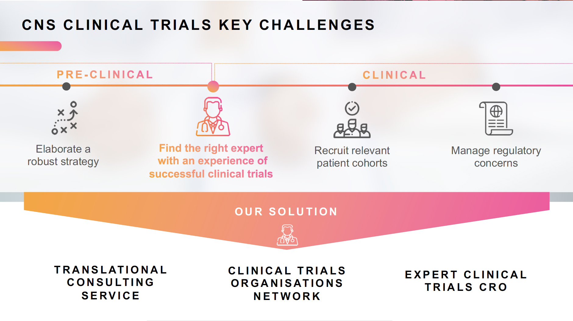 Translational consulting offer