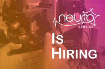 Our member NEUROSERVICE is hiring!
