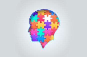 Bumetanide improves social behaviour in the BTBR model of Autism